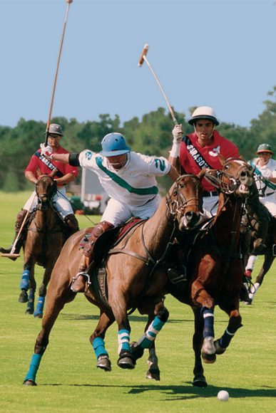 lwr-polo-players