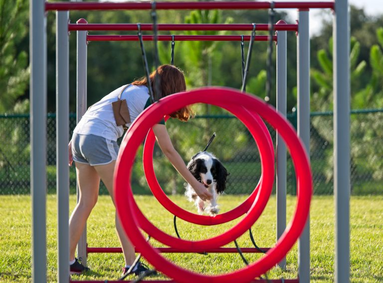 Kids and dog are released for use in advertisingGardner Park